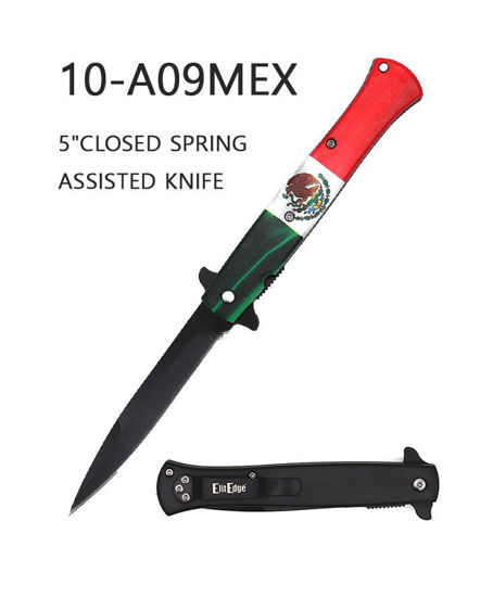 Picture of A09MEX